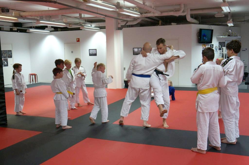 Judojuniorit (Ville opettaa)