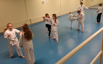 Kuukauden kamppailuyhteisö: Haapajärven Karateseura